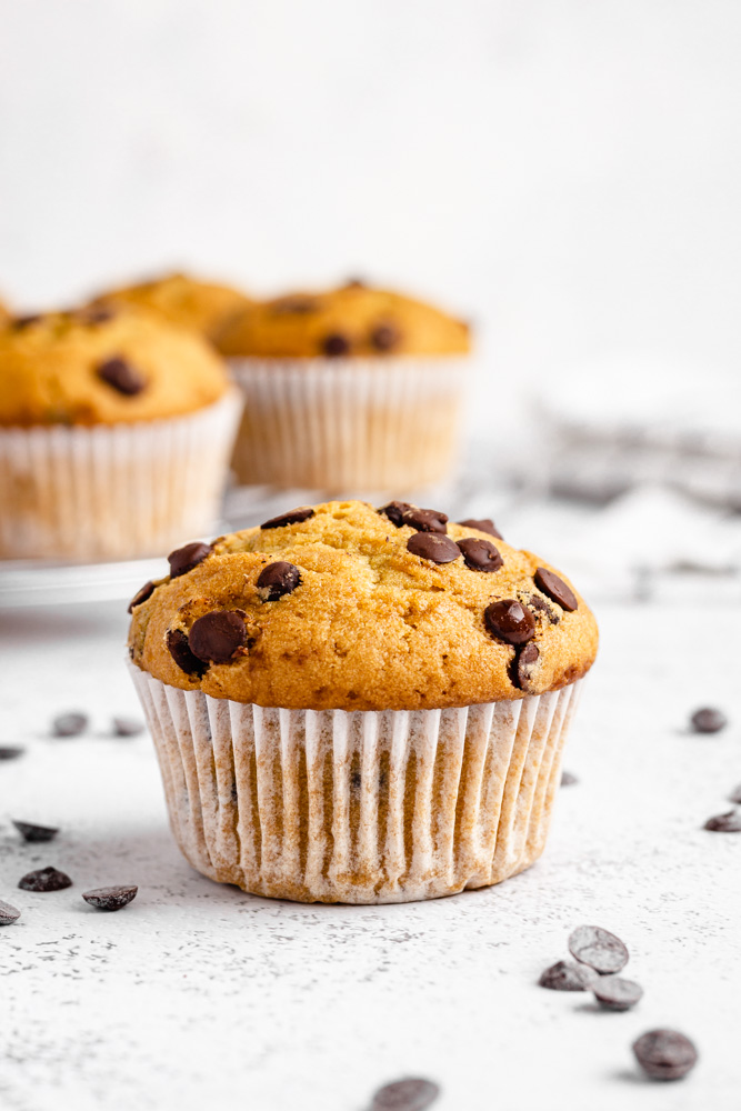 Vegan Muffin Surrounded By Chocolate Chips