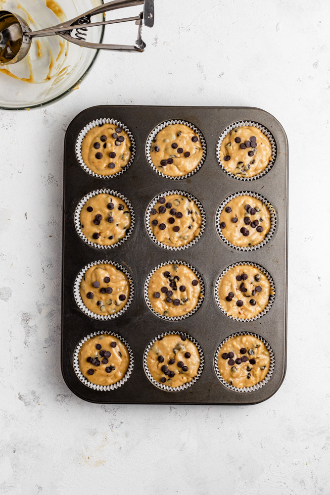 Chocolate chip muffins in baking pan